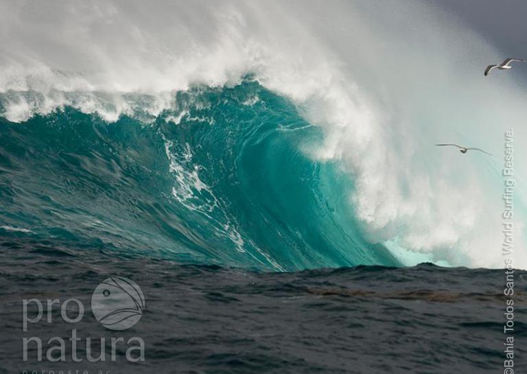 Bahía de Todos Santos ha sido declarada formalmente como la 6ta Reserva Mundial de Surf image
