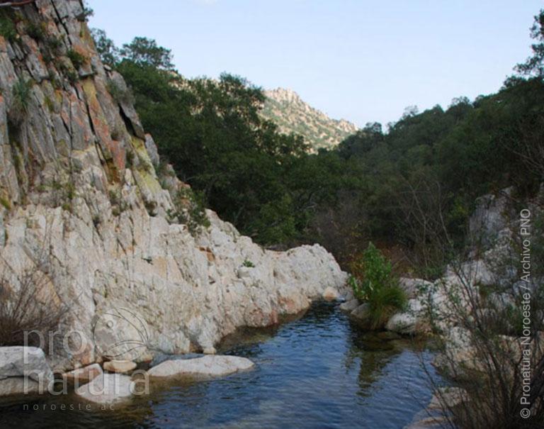 Sierra la Laguna | Pronatura Noroeste - Conservación y