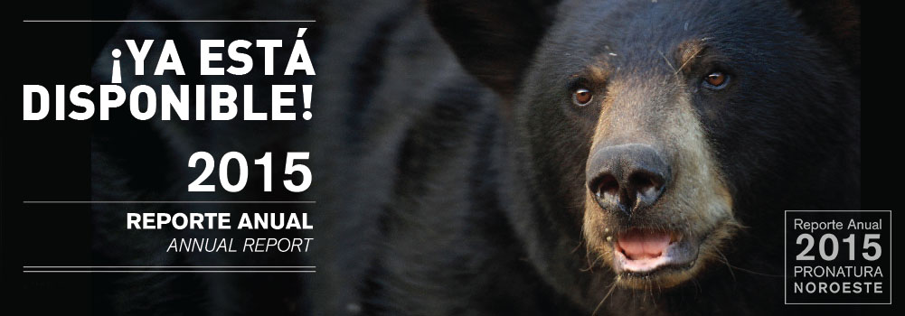 CONSULTA NUESTRO REPORTE ANUAL 2015 image