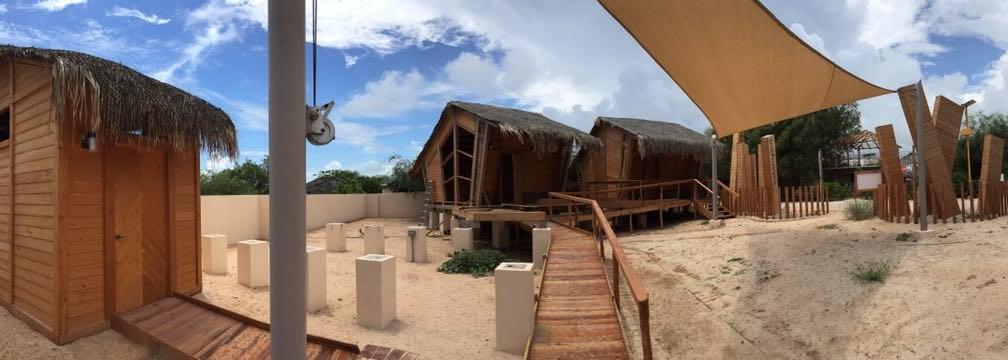 """Colaboradores de """"JW Marriott Los Cabos"""" recorren Centro de Visitantes de Cabo Pulmo image"""