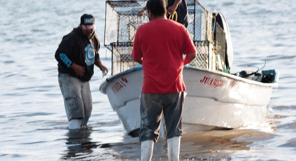 Convocatoria para contratación de encargado (a) de Proyectos de Mejoramiento Pesquero image