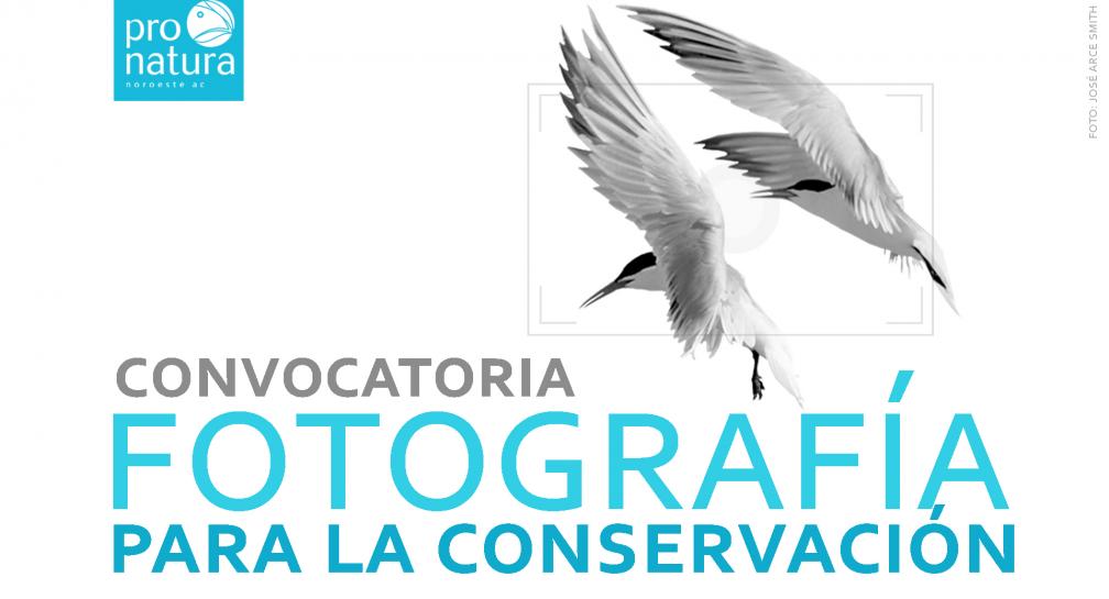 Convocatoria Fotografía para la Conservación 2017 image