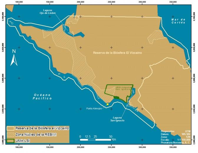 Localización de la UMA-LSI en relación con la REBIVI_B