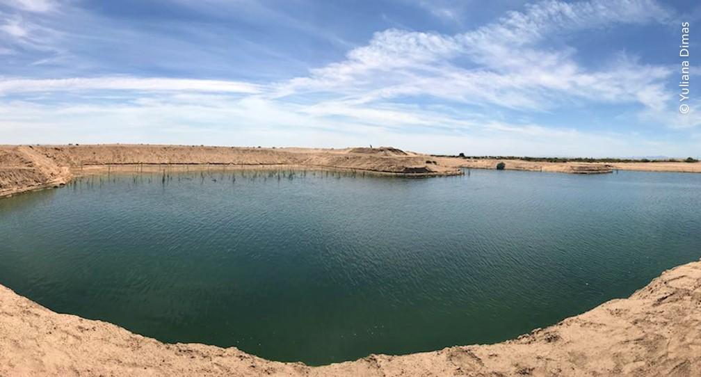 Humedal Cucapá: tratamiento y reuso del agua en favor del equilibro natural image