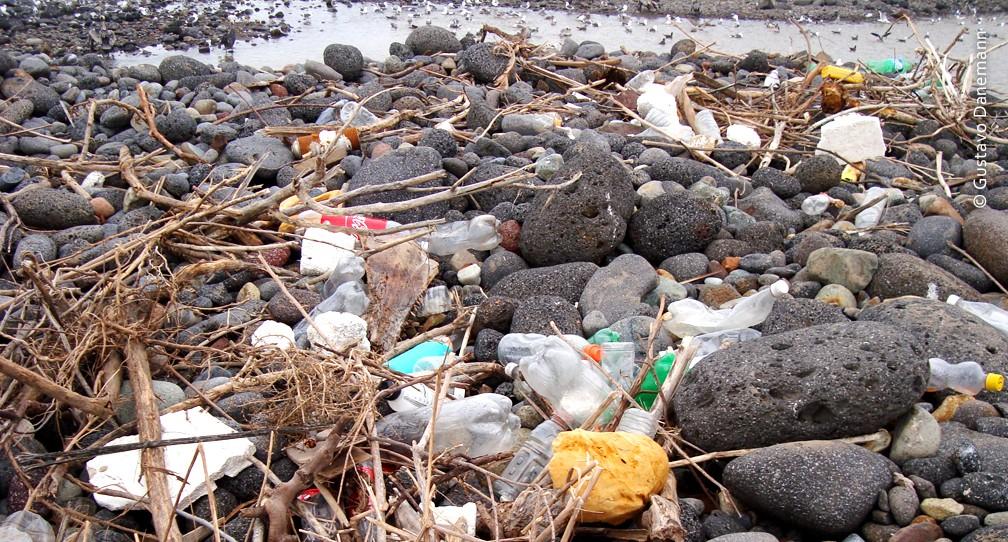 Iniciativas para reducir la contaminación marina image
